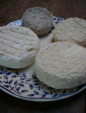 Ageing farmhouse goats cheese