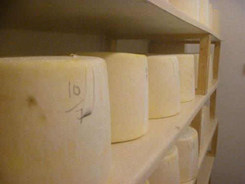 Ageing kirkham s lancashire cheese