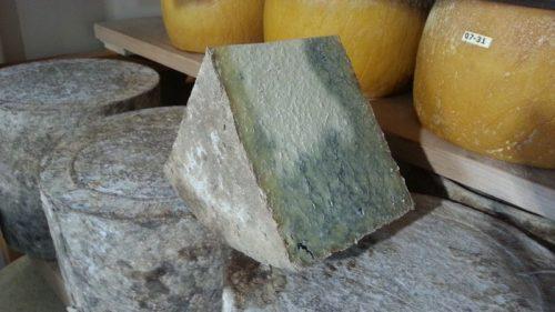 Bleu de termignon cheese