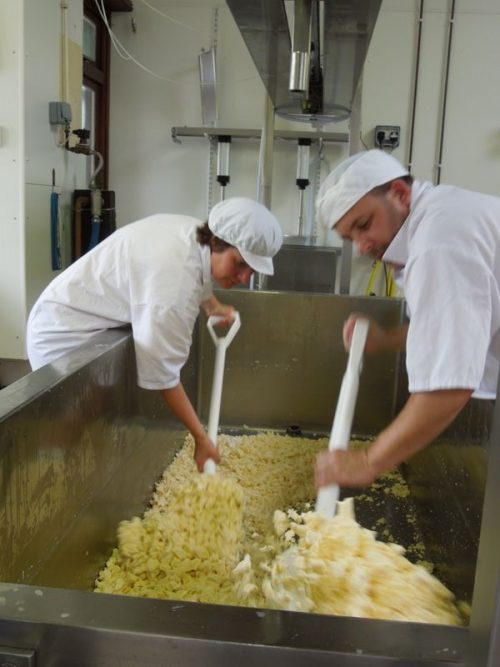 Botton creamery cheese making