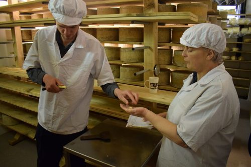 Grading Botton Cheese
