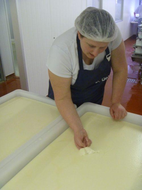 charlotte-testing-tunworth-cheese-curd