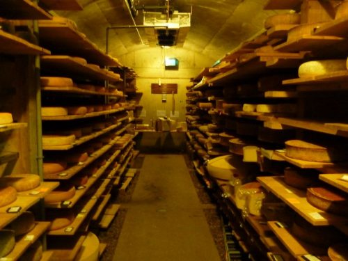Cheese cave at mons cheese