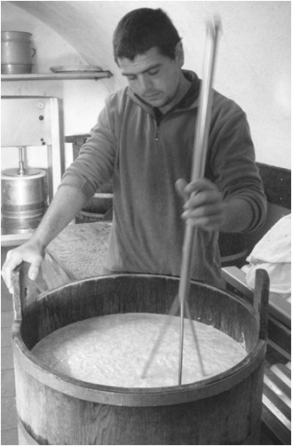 Cheesemaking olden days