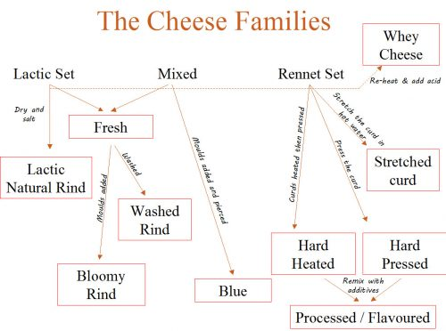 Cheese types different why