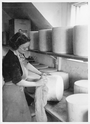 Cloth Binding Cheese History Photo