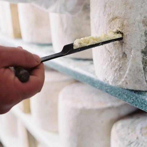 Creamy lancashire cheese kirkhams