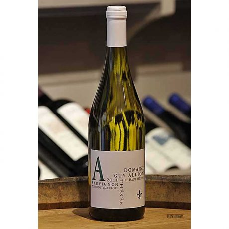 Guy Allion Sauvignon Blanc