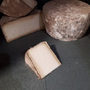 Holbrook Cheese