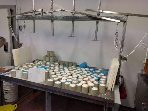 Corleggy Cheeses