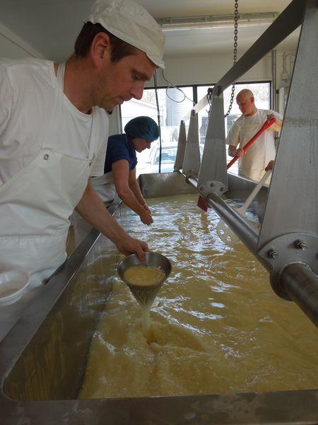 Hafod cheddar cheese 4