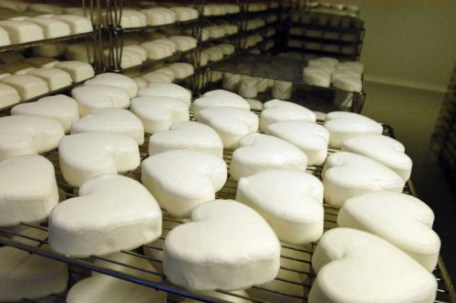 neufchatel-cheese-picture