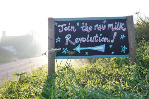 Raw Milk Day - Unpasteurised