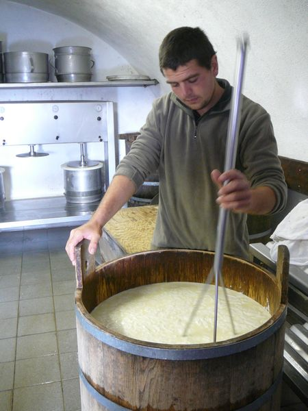 Salers buron traditional cheese