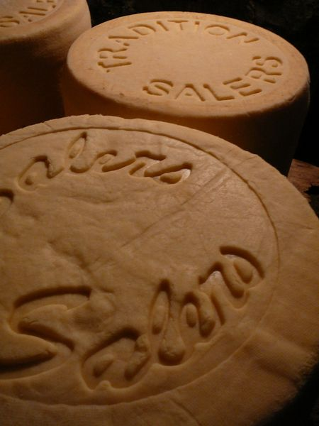 salers-cheese
