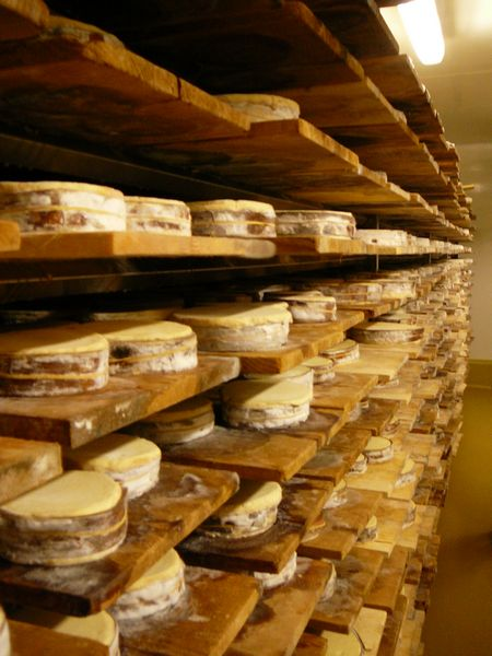 vacherin-mont-or-caves-photo
